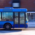 City Bus Tour & Lunch